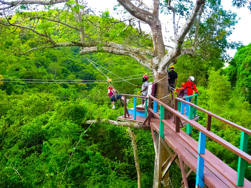 Mulher que vai em uma aventura do zipline da selva fotos de stock royalty free