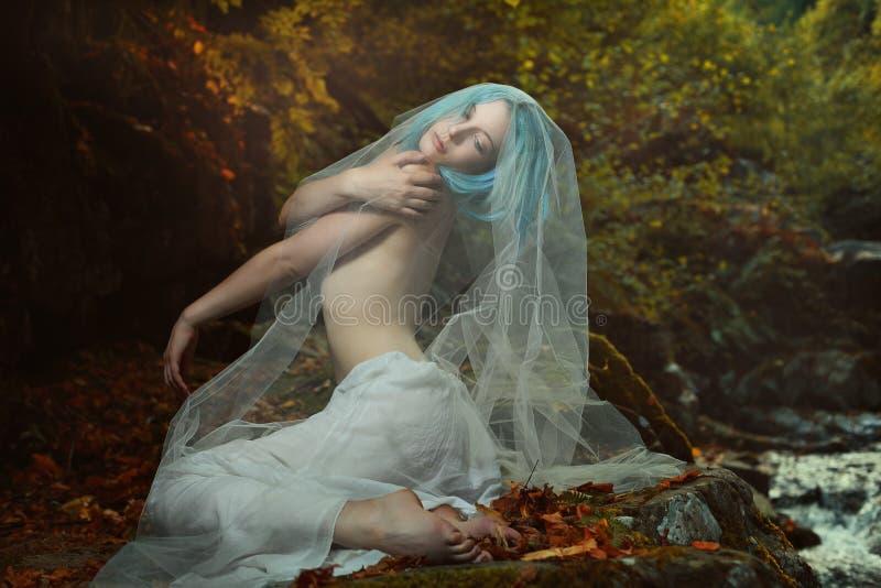 A mulher romântica que levanta no outono colore a floresta imagem de stock
