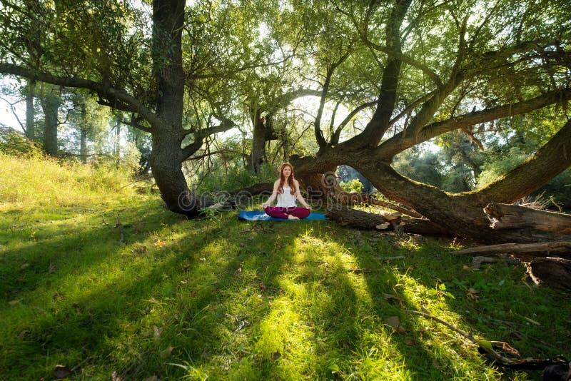 A mulher ruivo nova que faz a ioga exercita na natureza no sportswear no sol nas madeiras imagem de stock