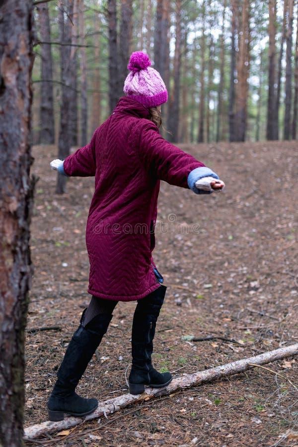 Mulher rural bonito na floresta do outono imagens de stock