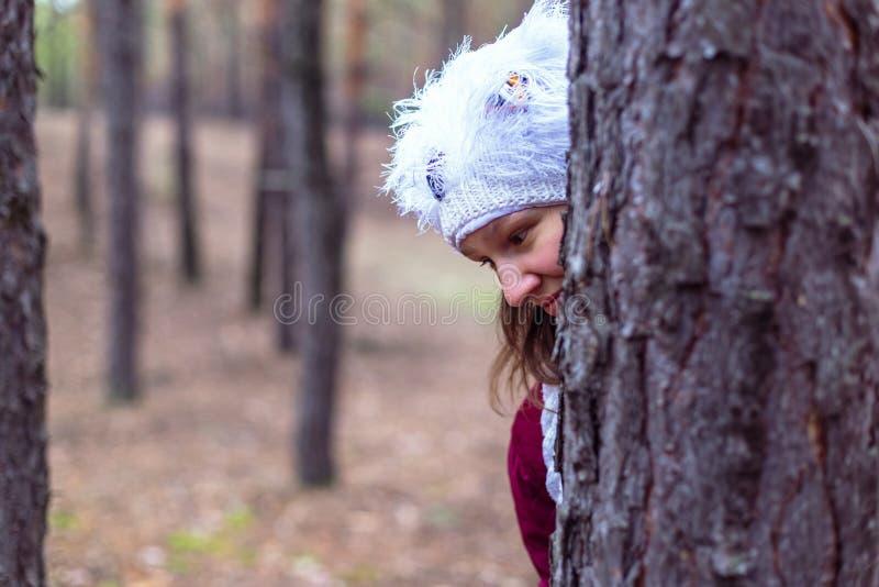 Mulher rural bonito na floresta do outono fotografia de stock