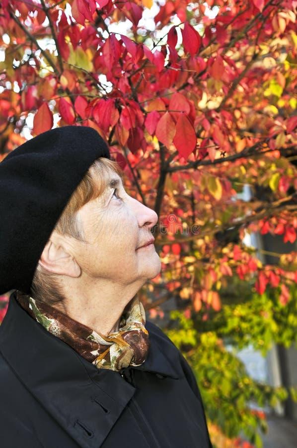 Mulher sênior no parque da queda foto de stock