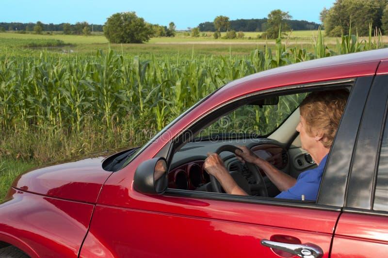 Mulher sênior que conduz na estrada rural por Campo de milho fotos de stock royalty free