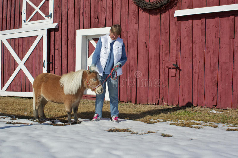 Mulher sênior que Petting o cavalo diminuto foto de stock