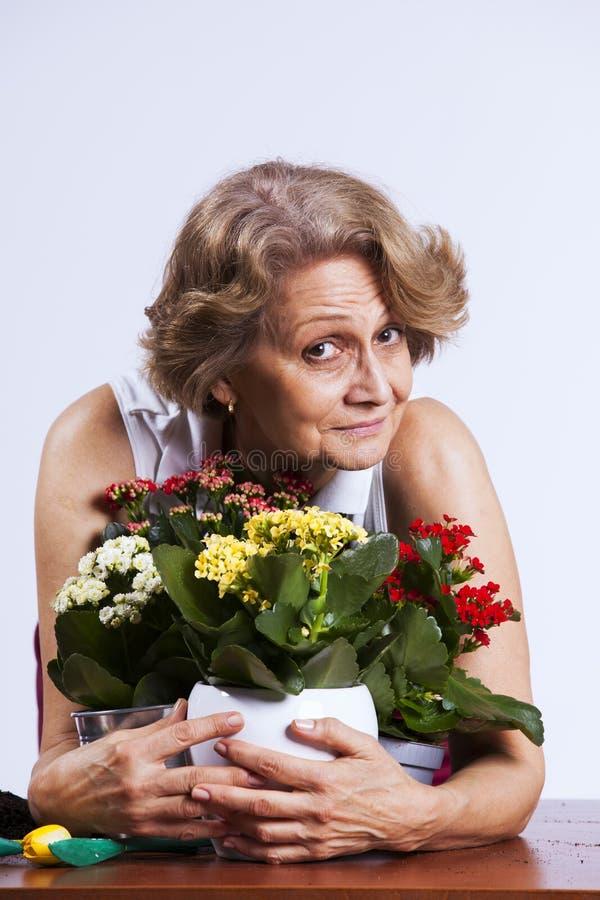 Mulher sênior que planta flores fotografia de stock