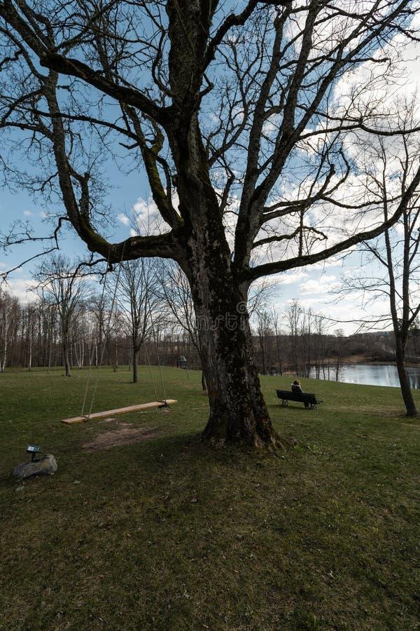 Mulher só que senta-se em um banco em um parque que pensa sobre a vida que olha o horizonte - solar de Liepupes Muiza em bonito fotos de stock