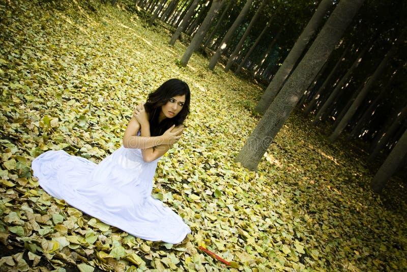 Mulher Scared nas madeiras imagens de stock