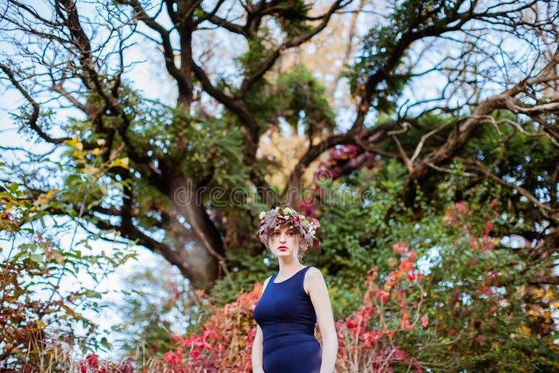 Mulher sensual com queda na árvore do outono imagem de stock royalty free