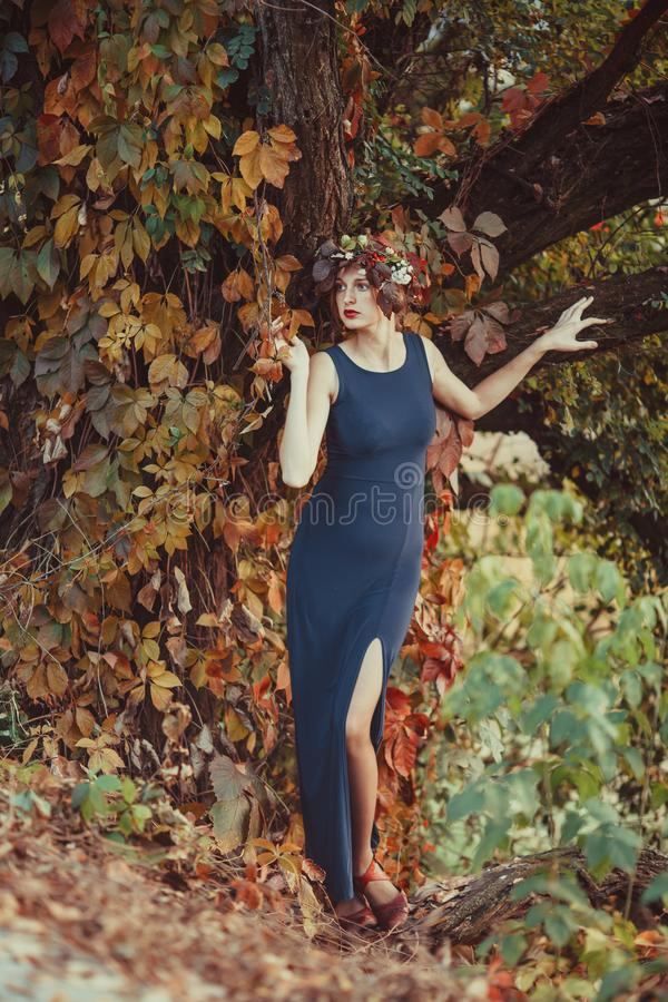 Mulher sensual com queda na árvore do outono fotos de stock