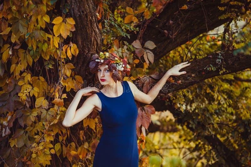 Mulher sensual com queda na árvore do outono foto de stock