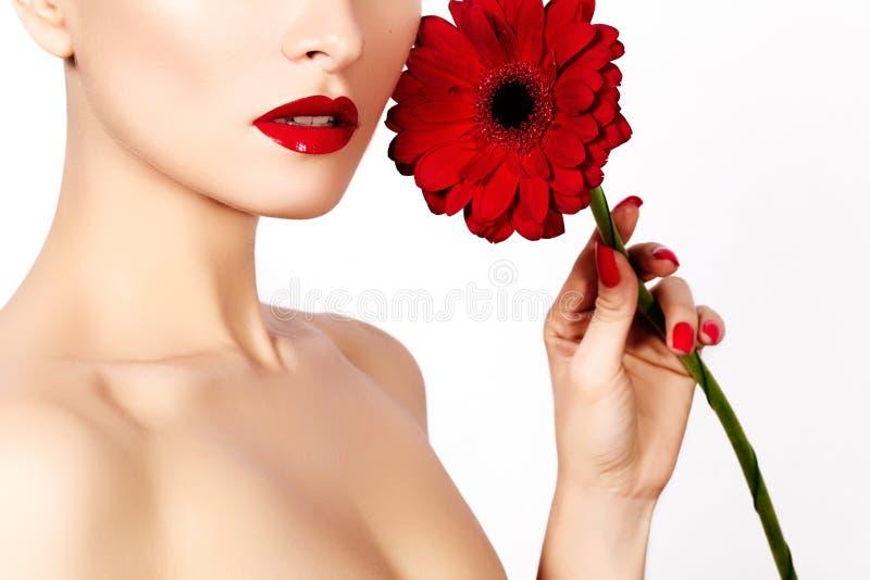 Mulher 'sexy' da foto da beleza do close-up com bordos vermelhos, batom e a flor vermelha bonita Pele limpa dos termas fotos de stock royalty free