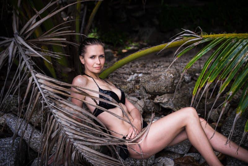 A mulher 'sexy' nova com corpo ideal no roupa de banho preto está levantando nas folhas de palmeira na selva fotografia de stock
