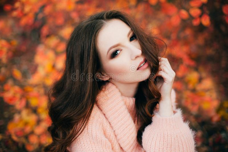Mulher 'sexy' nova na floresta do outono imagem de stock