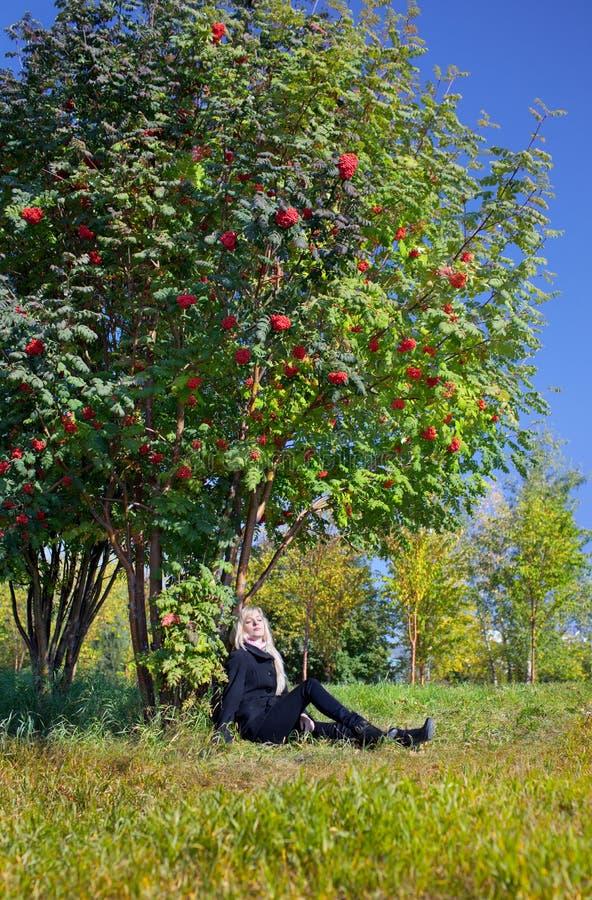 Mulher sob a árvore de cinza da montanha imagem de stock royalty free