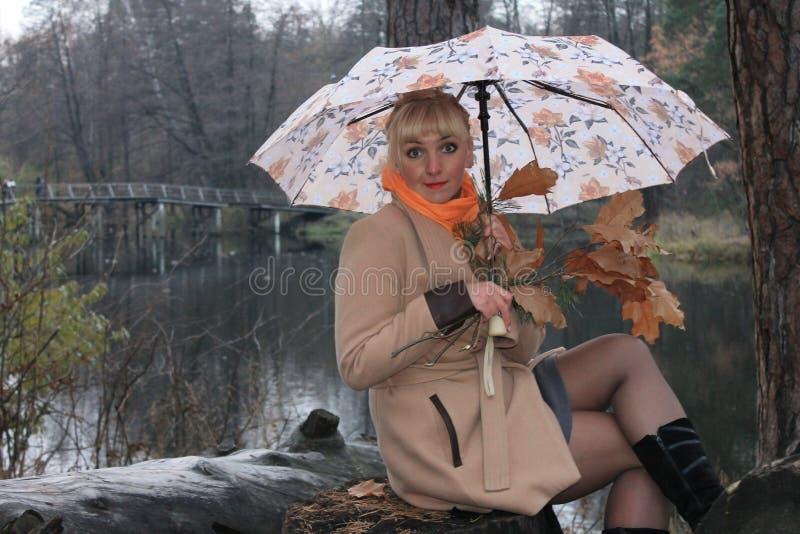Mulher sob um guarda-chuva, queda atrasada, lago da floresta imagem de stock