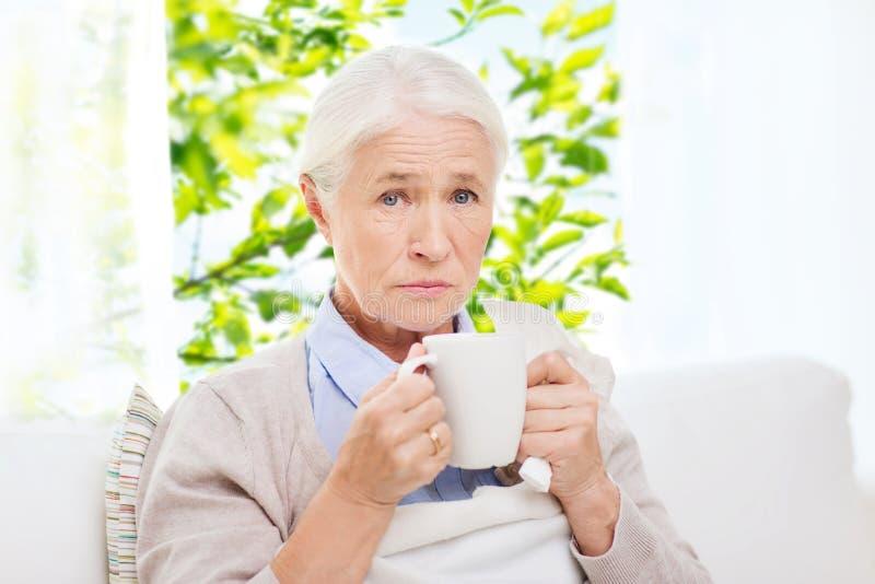 Mulher superior doente que bebe o chá quente em casa fotografia de stock
