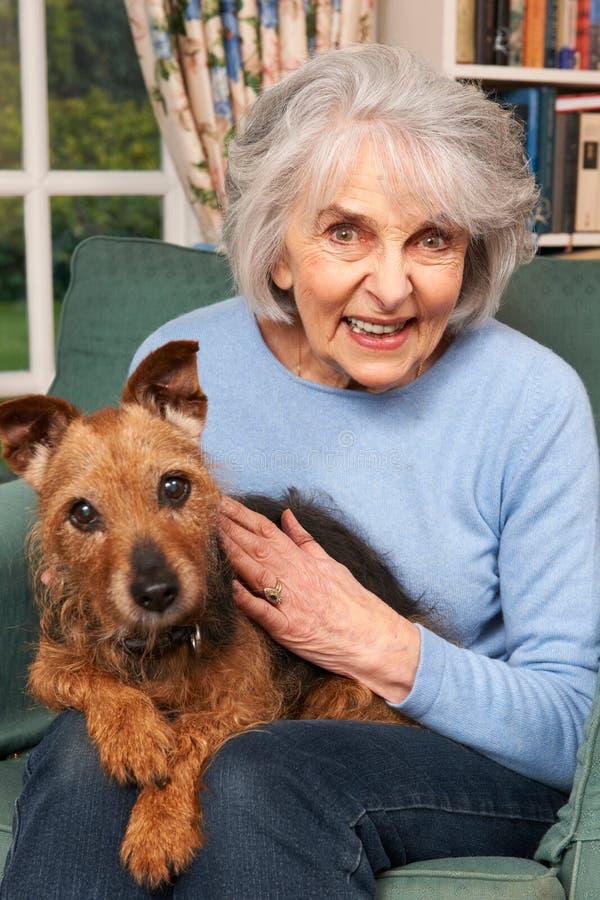 Mulher superior em casa com cão de estimação imagem de stock royalty free