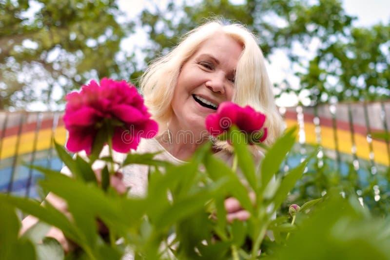 Mulher superior feliz com as flores que florescem no jardim do verão imagens de stock