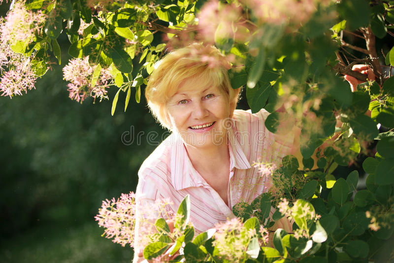 Mulher superior otimista alegre vívida entre flores foto de stock