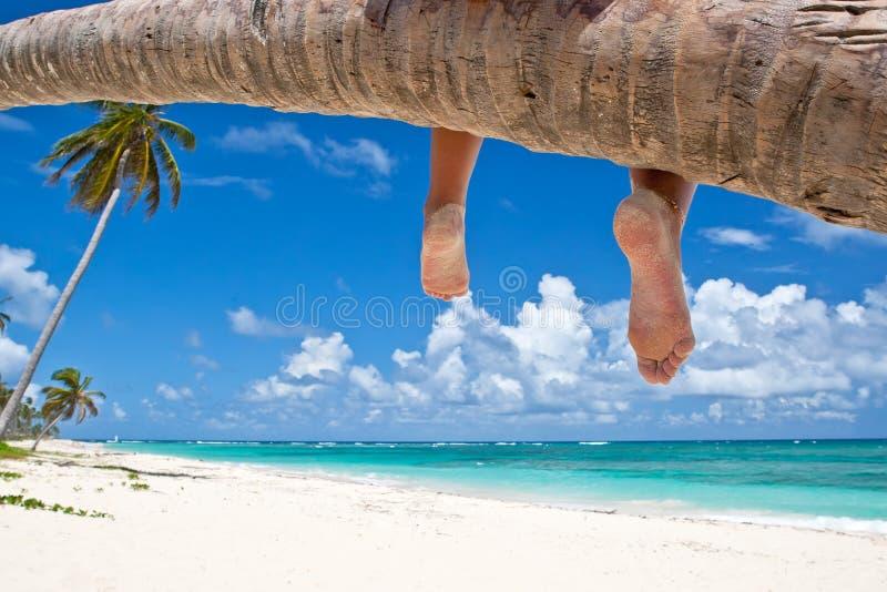 Mulher Tanned que senta-se em uma praia branca da areia da palma imagem de stock