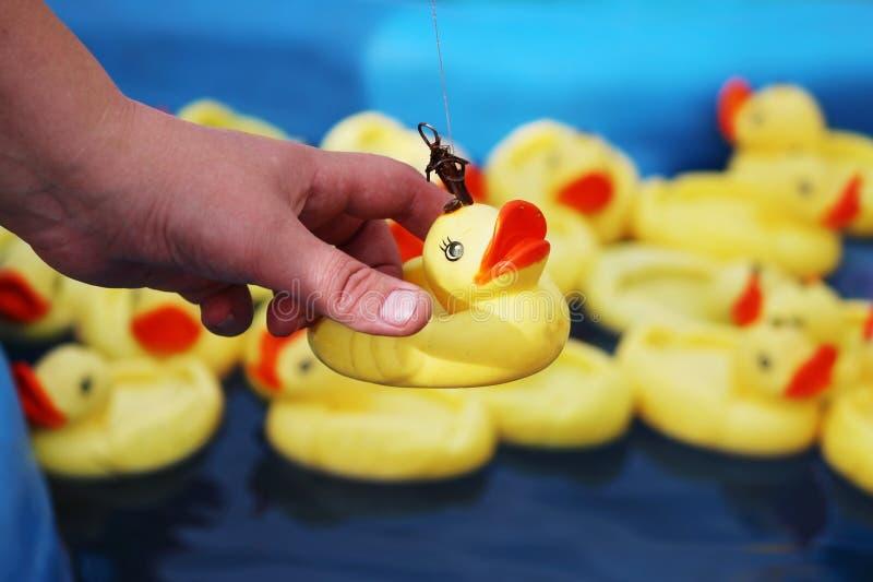 A mulher trava o pato de muitos patos de borracha amarelos que flutuam na associação azul usando a vara de pesca foto de stock royalty free