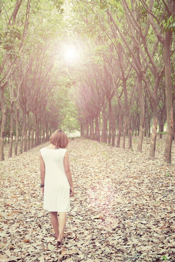 Mulher triste que anda apenas na floresta que sente triste e só fotos de stock