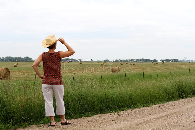 Mulher vestindo um chapéu de vaqueiro olhando um campo de pacotes de feno imagens de stock