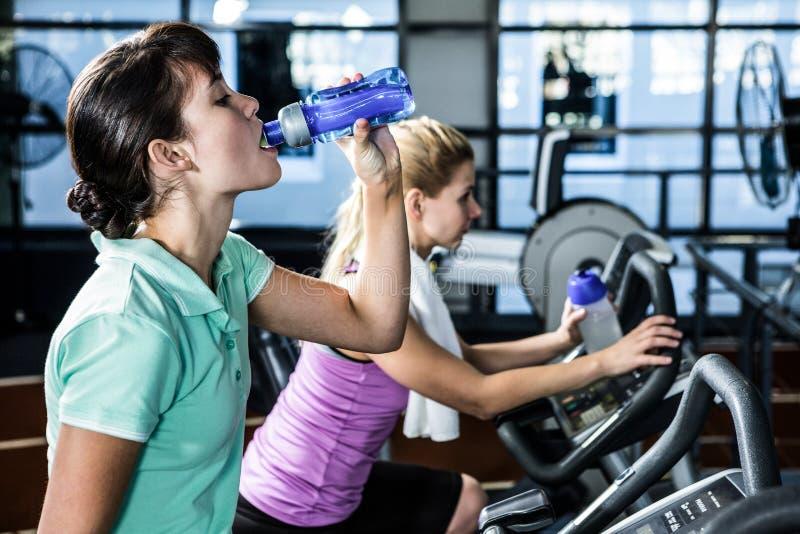 Mulheres aptas com a garrafa da água usando a bicicleta foto de stock royalty free