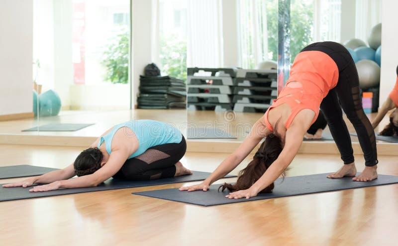 Mulheres asiáticas novas que praticam a ioga, aptidão que estica o flexibilit imagens de stock royalty free