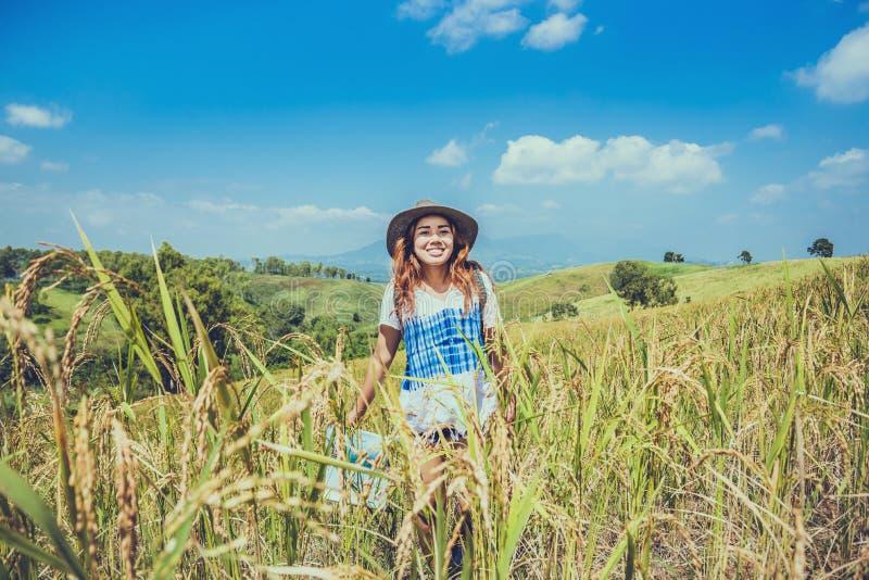 Mulheres asiáticas relaxam no feriado Expandir mapa de pesquisa Campo de montanha rancho de arroz na colina Tailândia imagem de stock royalty free