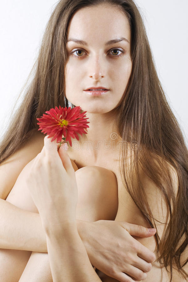 Mulheres bonitas com flover vermelho fotografia de stock