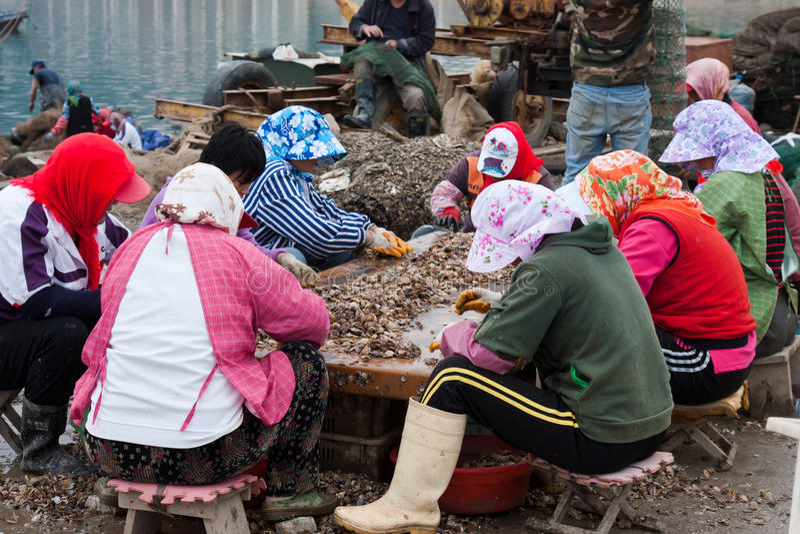 Mulheres chinesas que trabalham na aldeia piscatória fotografia de stock
