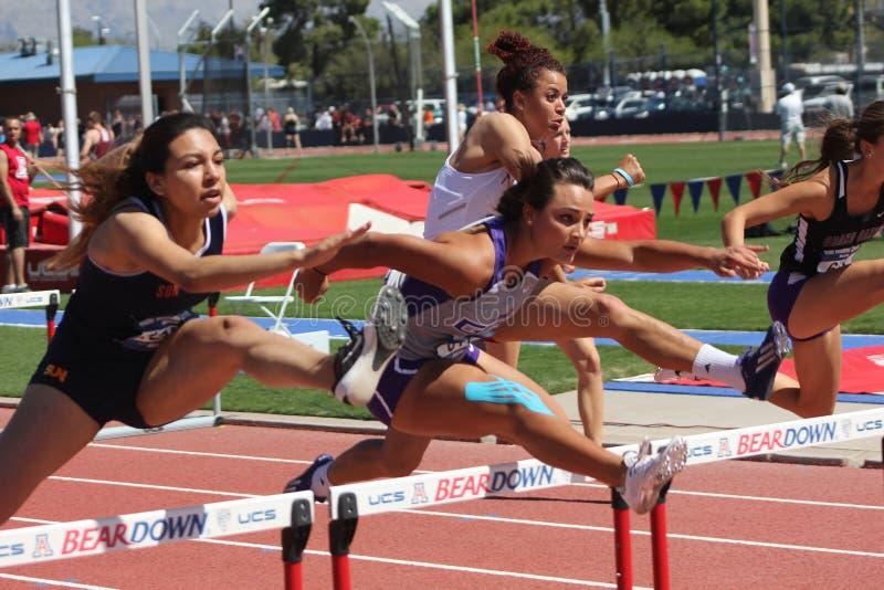 Mulheres da faculdade que saltam a raça de obstáculos fotos de stock royalty free