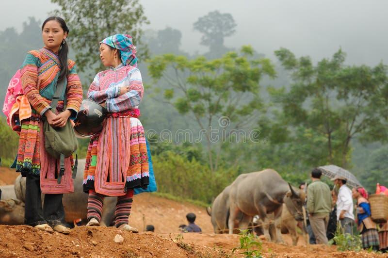Mulheres de Hmong da flor fotografia de stock