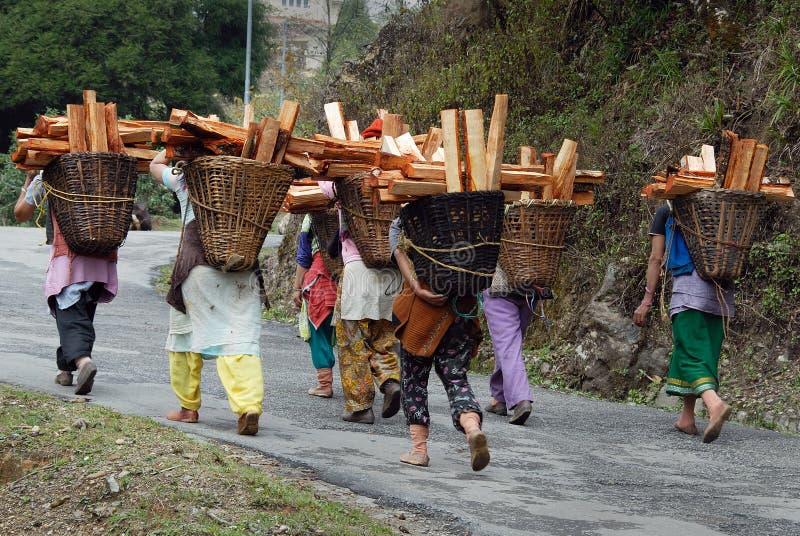 Mulheres de madeira do coletor fotos de stock royalty free