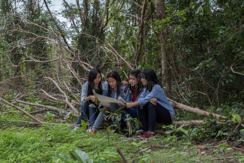 Mulheres do grupo de jovens mulheres amigáveis na natureza fotografia de stock