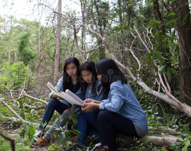 Mulheres do grupo de jovens mulheres amigáveis na natureza foto de stock