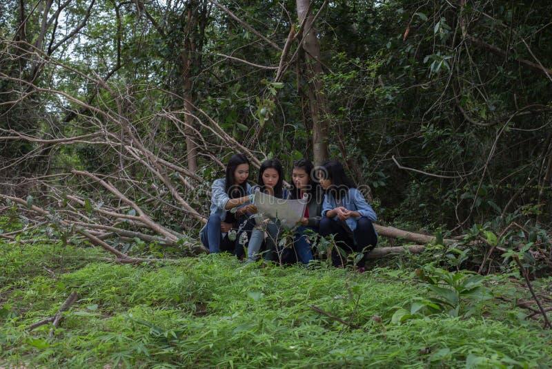 Mulheres do grupo de jovens mulheres amigáveis na natureza fotos de stock royalty free