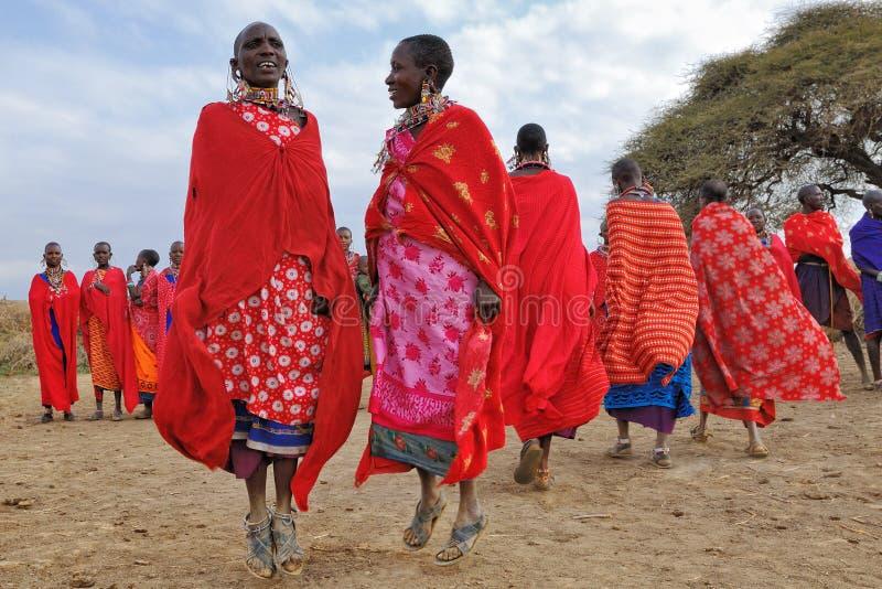 Mulheres do Masai da dança imagens de stock royalty free