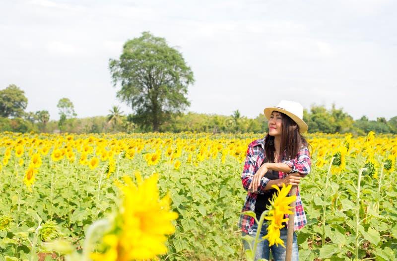 Mulheres dos fazendeiros que trabalham em um campo dos girassóis fotografia de stock royalty free