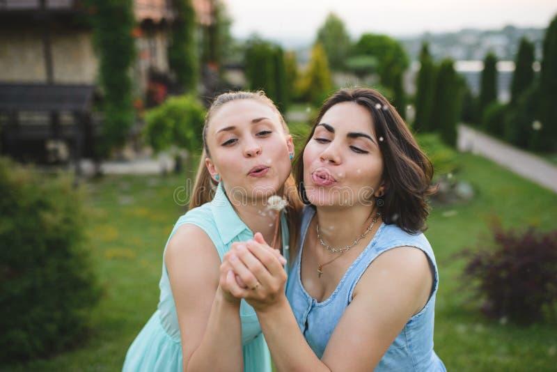 Mulheres encantadores com dente-de-leão imagem de stock royalty free
