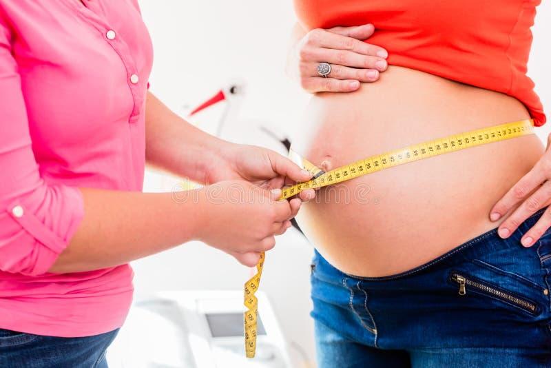Mulheres gravidas eretas e circunferência de medição da parteira de b fotografia de stock