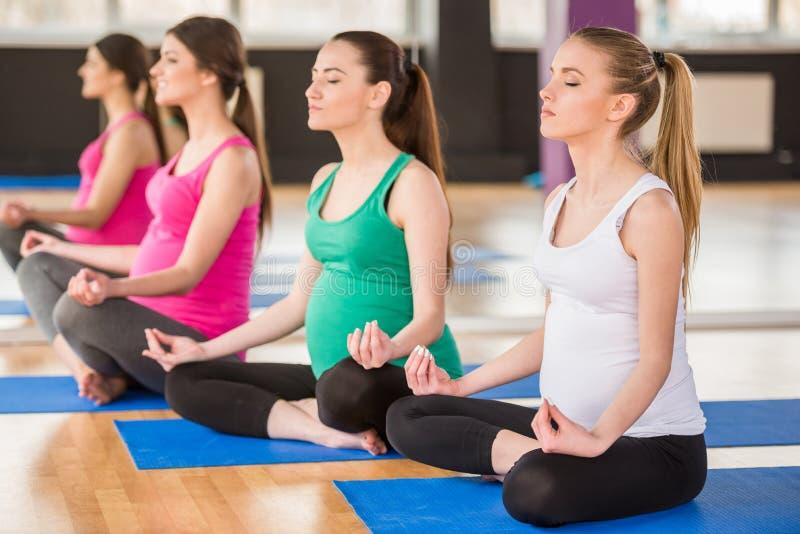Mulheres gravidas no gym imagens de stock royalty free
