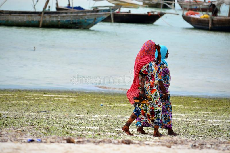 Mulheres muçulmanas que andam na praia, Zanzibar foto de stock