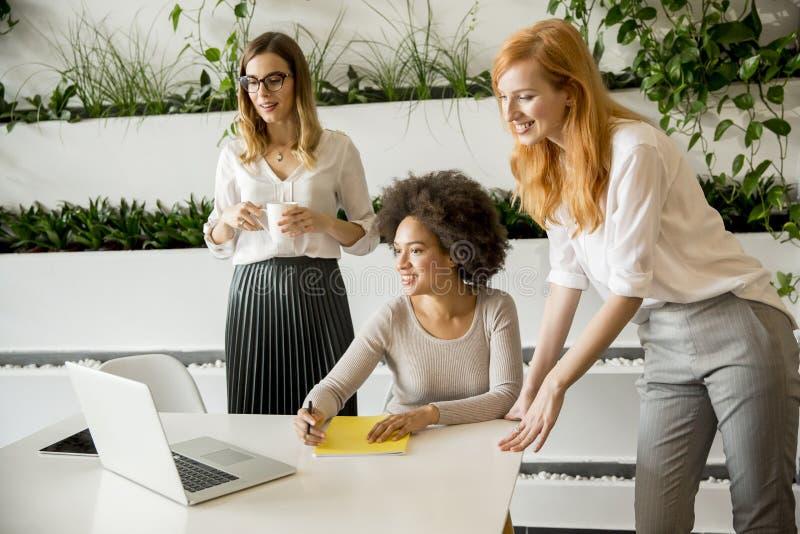 Mulheres multirraciais profissionais alegres que trabalham no escritório moderno imagem de stock