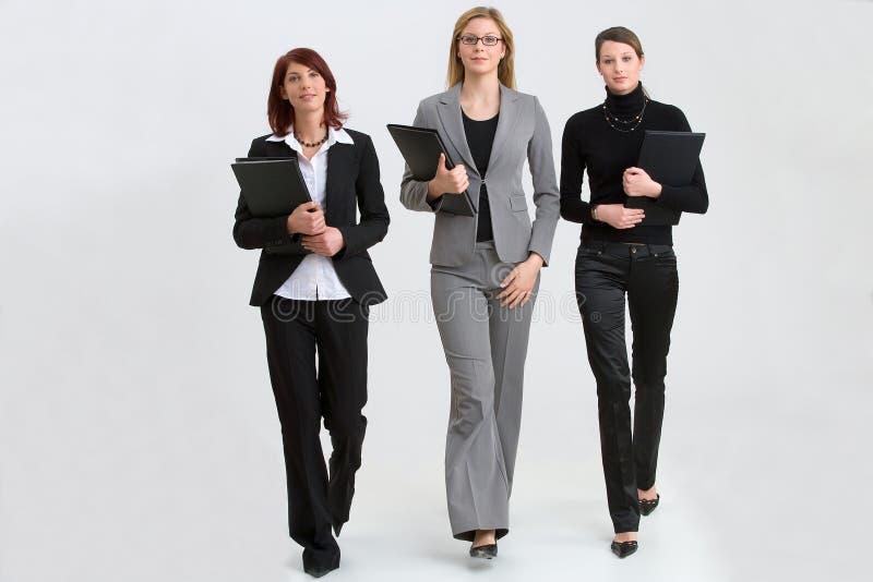 Mulheres no trabalho imagem de stock