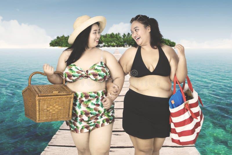 Mulheres obesos que andam na ponte foto de stock