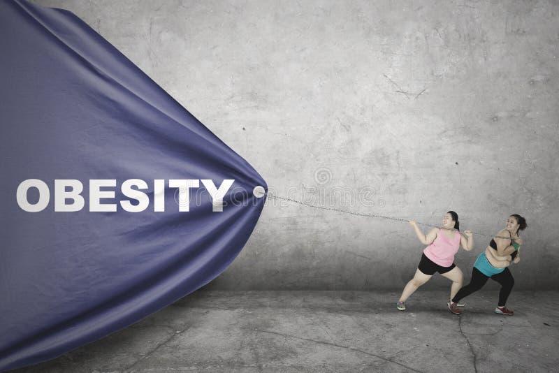 Mulheres obesos que puxam o texto da obesidade foto de stock