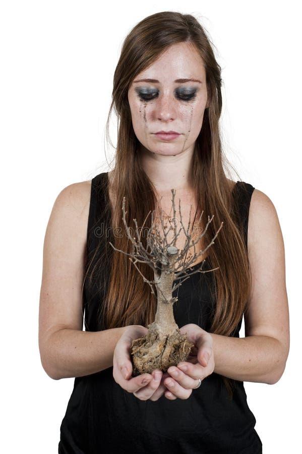Mulheres que gritam sobre a árvore inoperante fotos de stock
