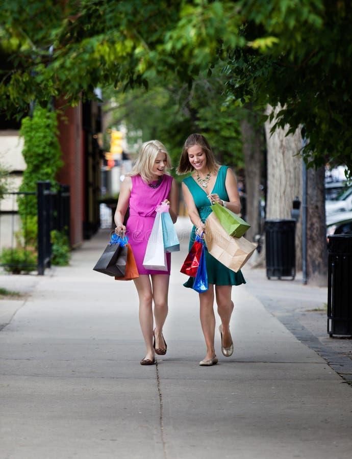 Mulheres que olham sacos de compras imagem de stock